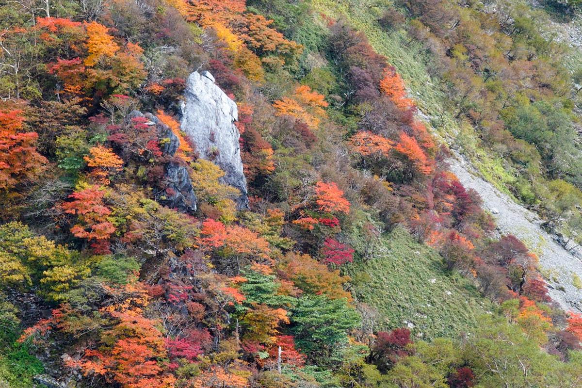 三嶺の紅葉