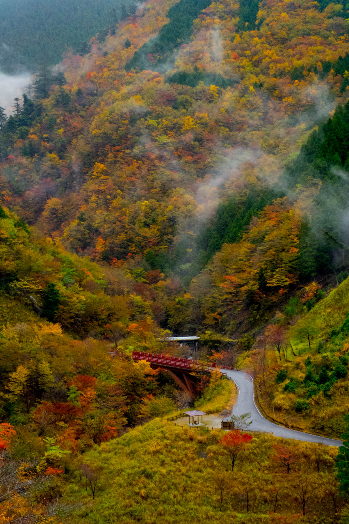 別府峡の紅葉