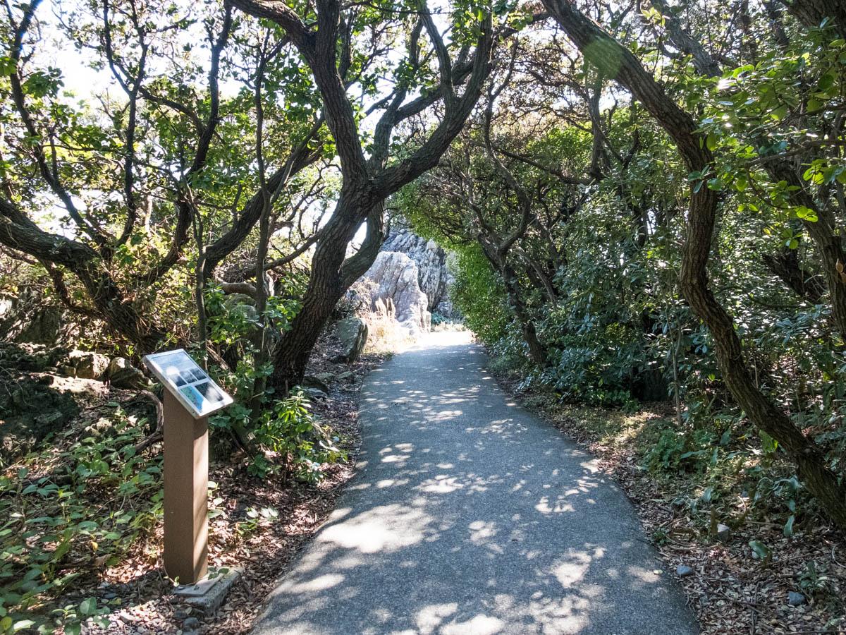 室戸岬の遊歩道