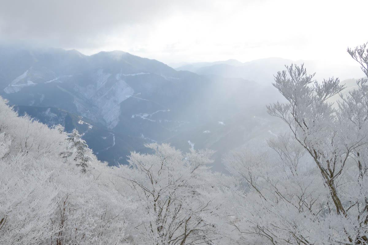 寒風山の霧氷