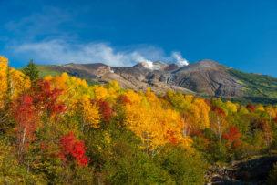 望岳台の紅葉