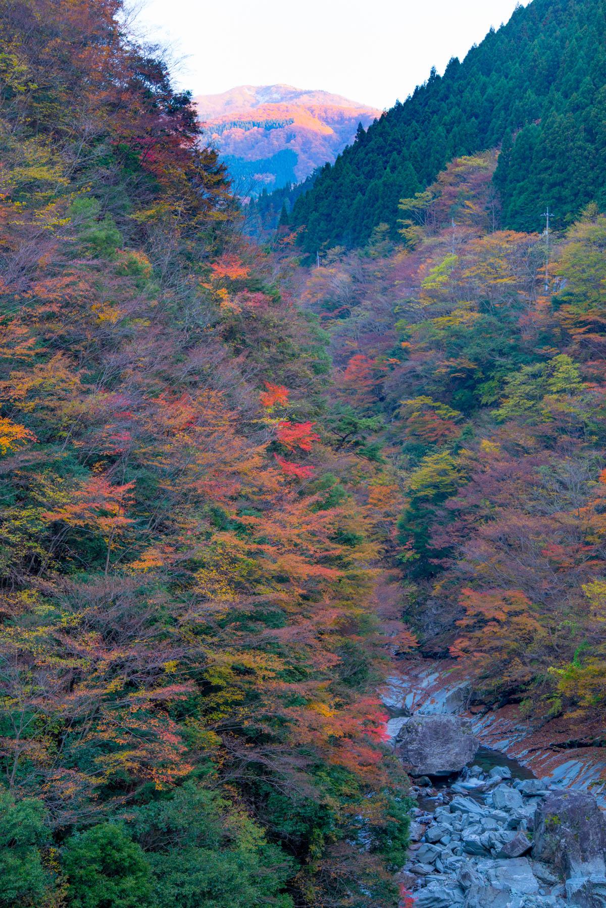 竜ケ峡の紅葉