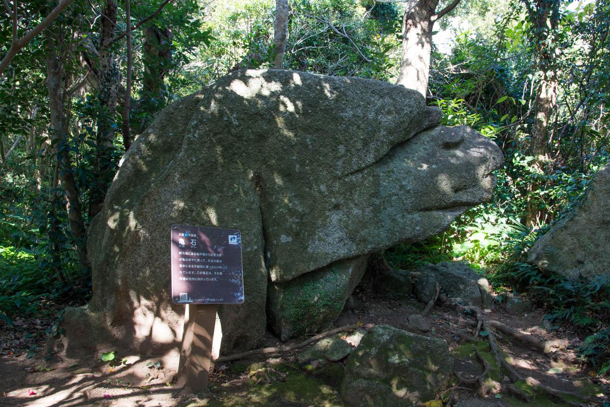 足摺岬の亀石