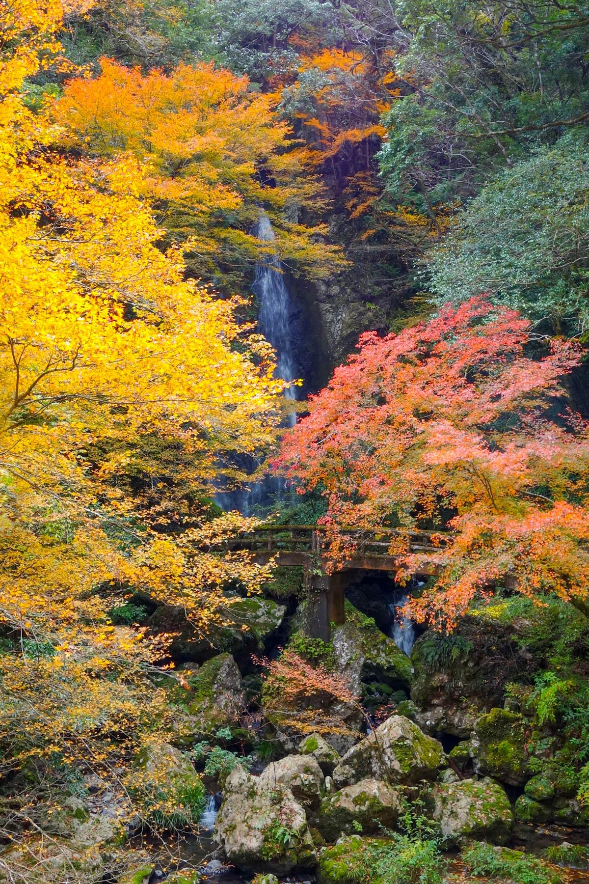 長沢の滝の紅葉