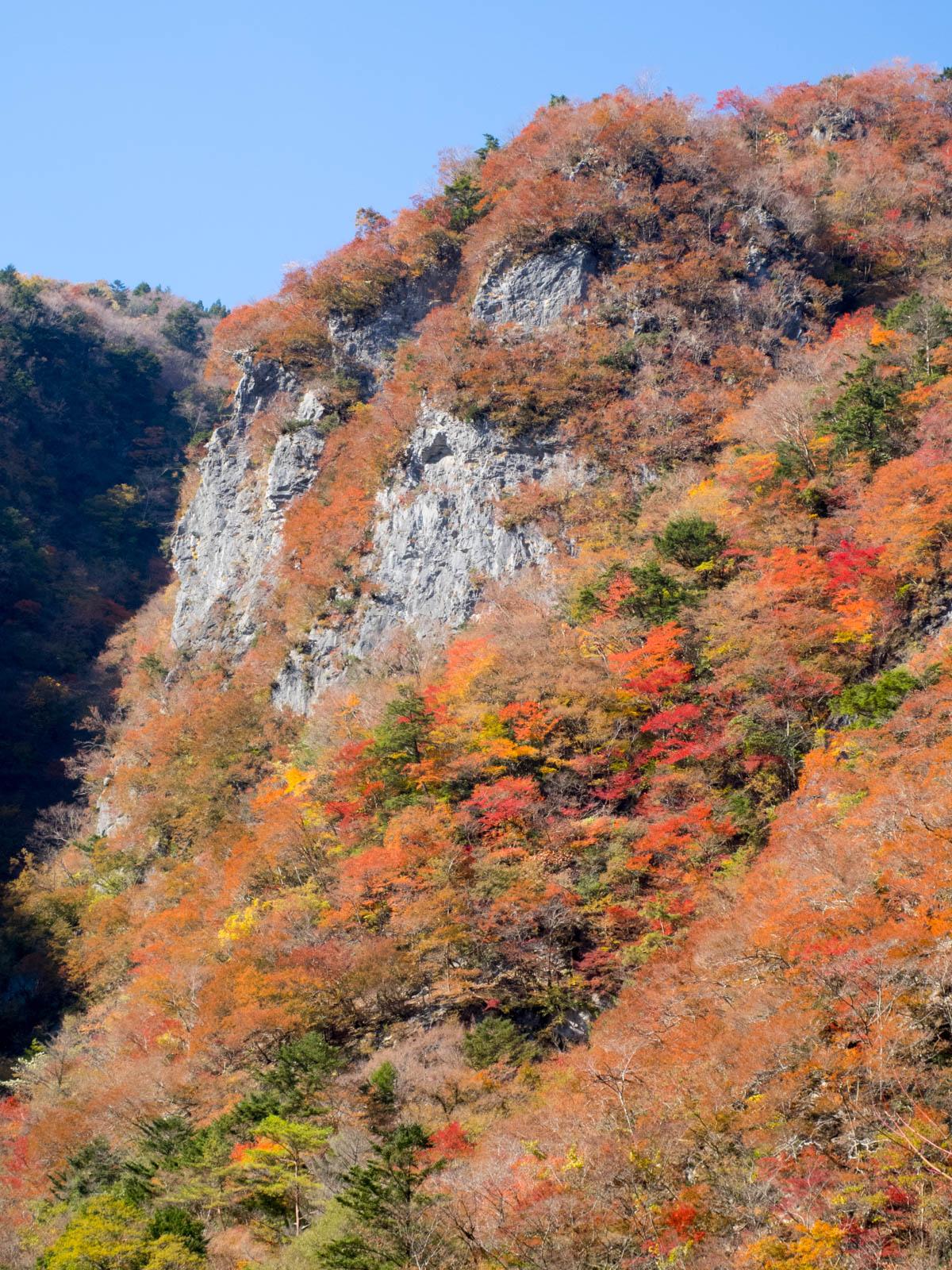 高の瀬峡の紅葉