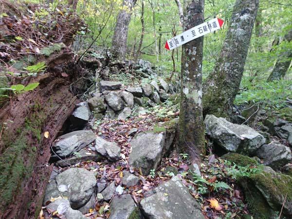 登山道は荒れているが、いたるところに案内看板が設置されている。