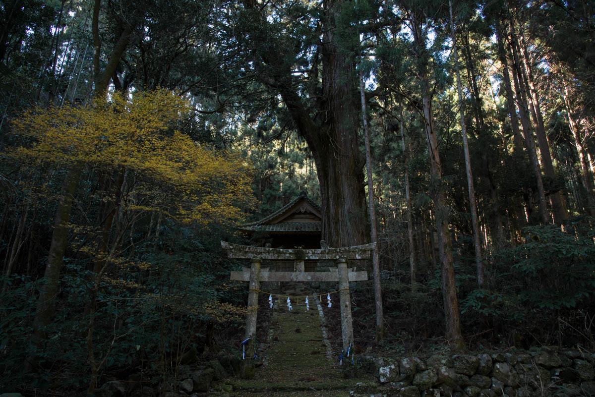 高知県香美市香北町の別役神社