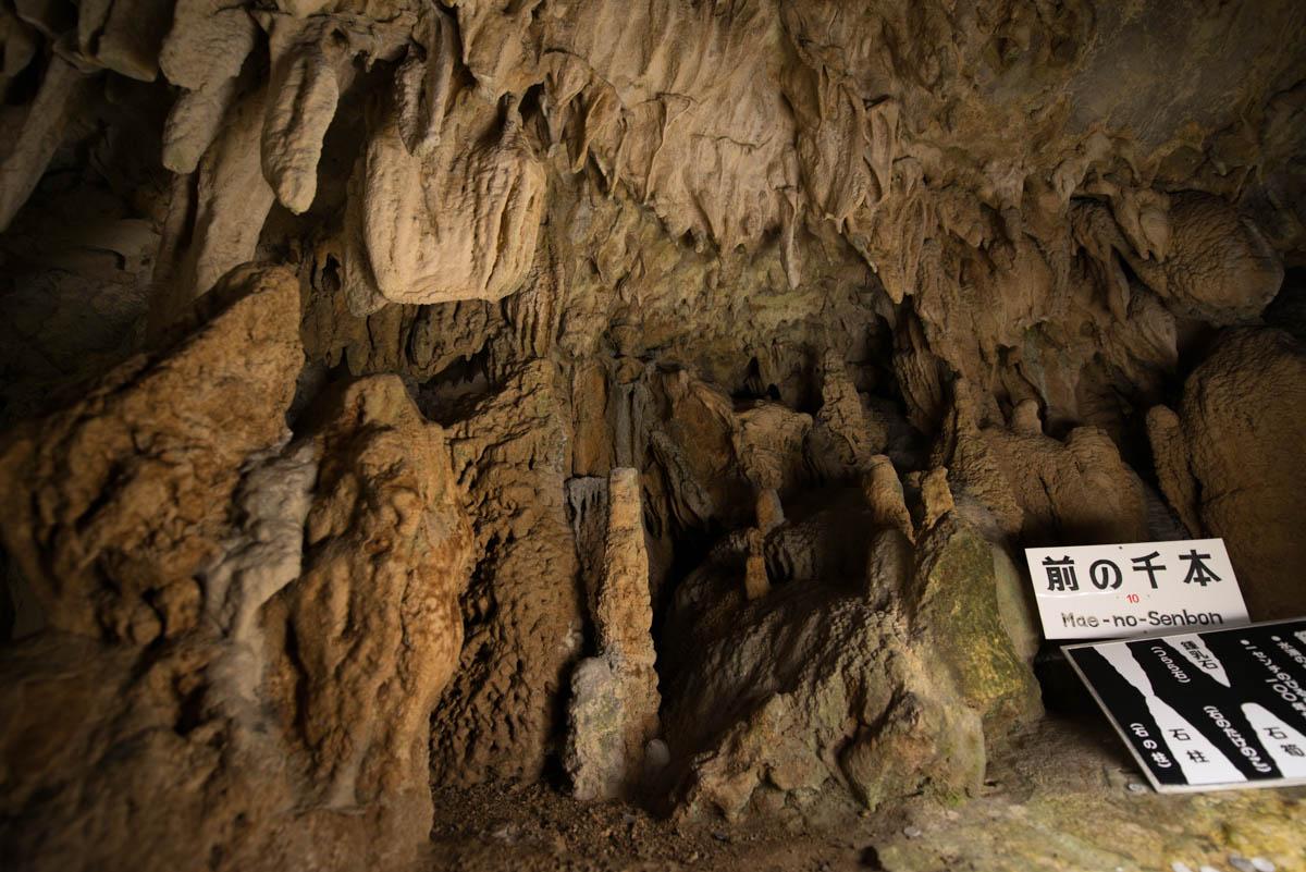 龍河洞の前の千本