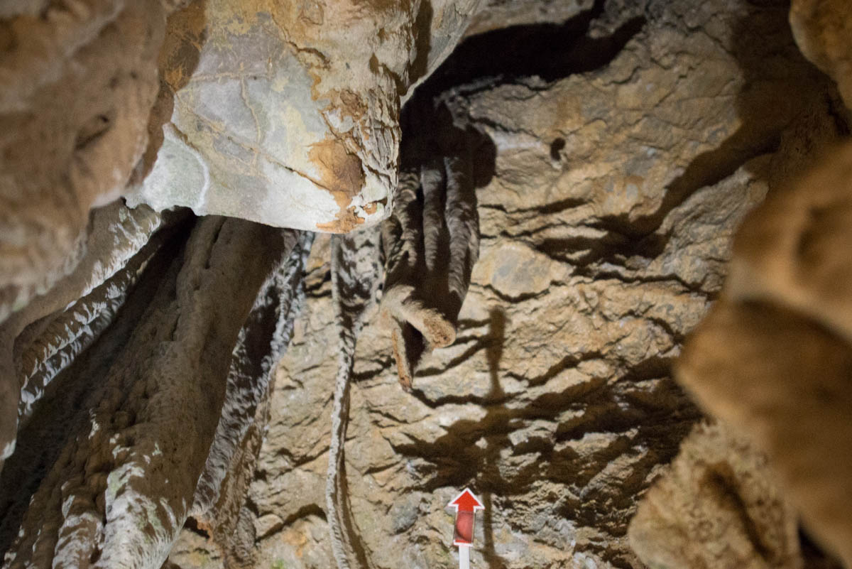 龍河洞の鮭の石
