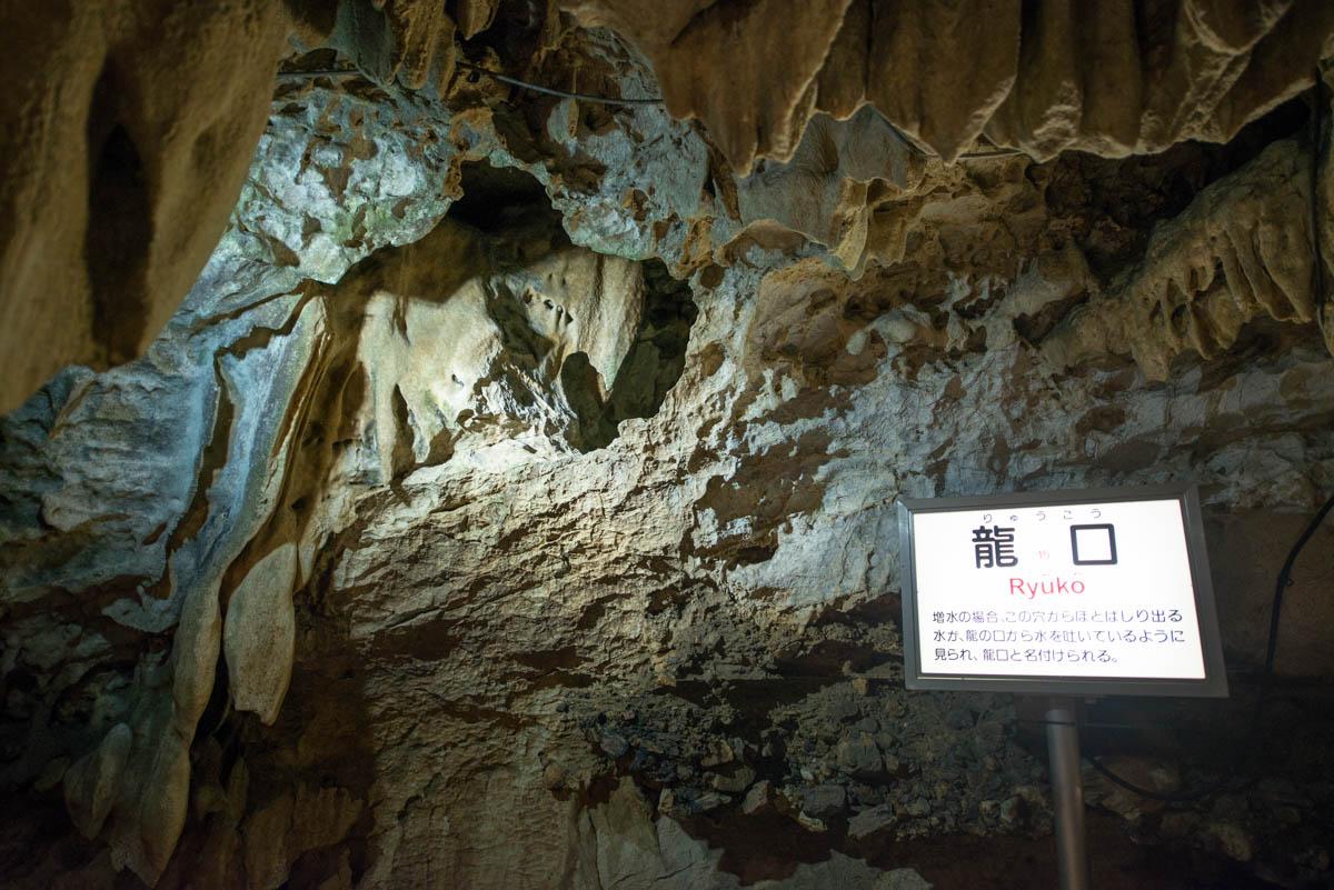 龍河洞の龍口