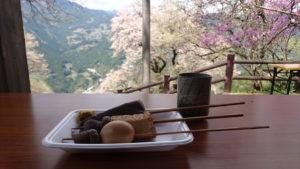高知県仁淀川町のひょうたん桜とおでん