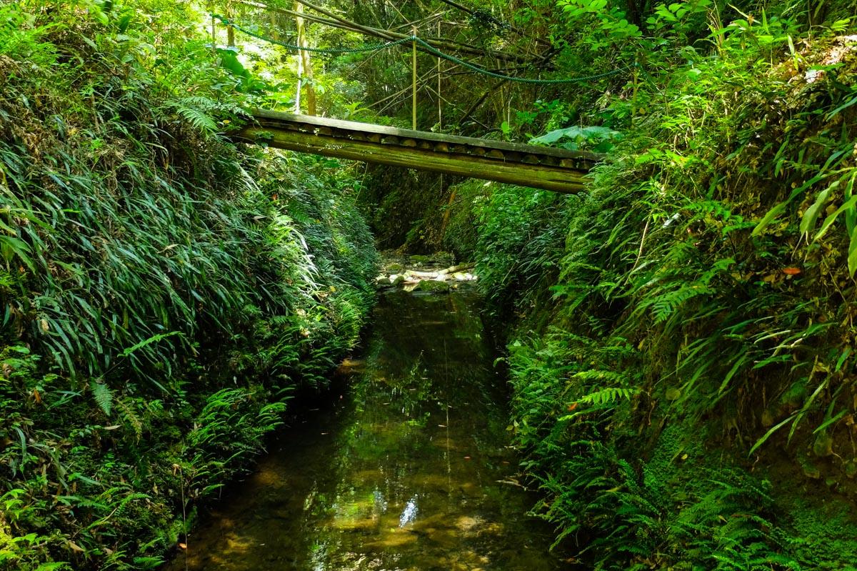 伊尾木洞道中の橋