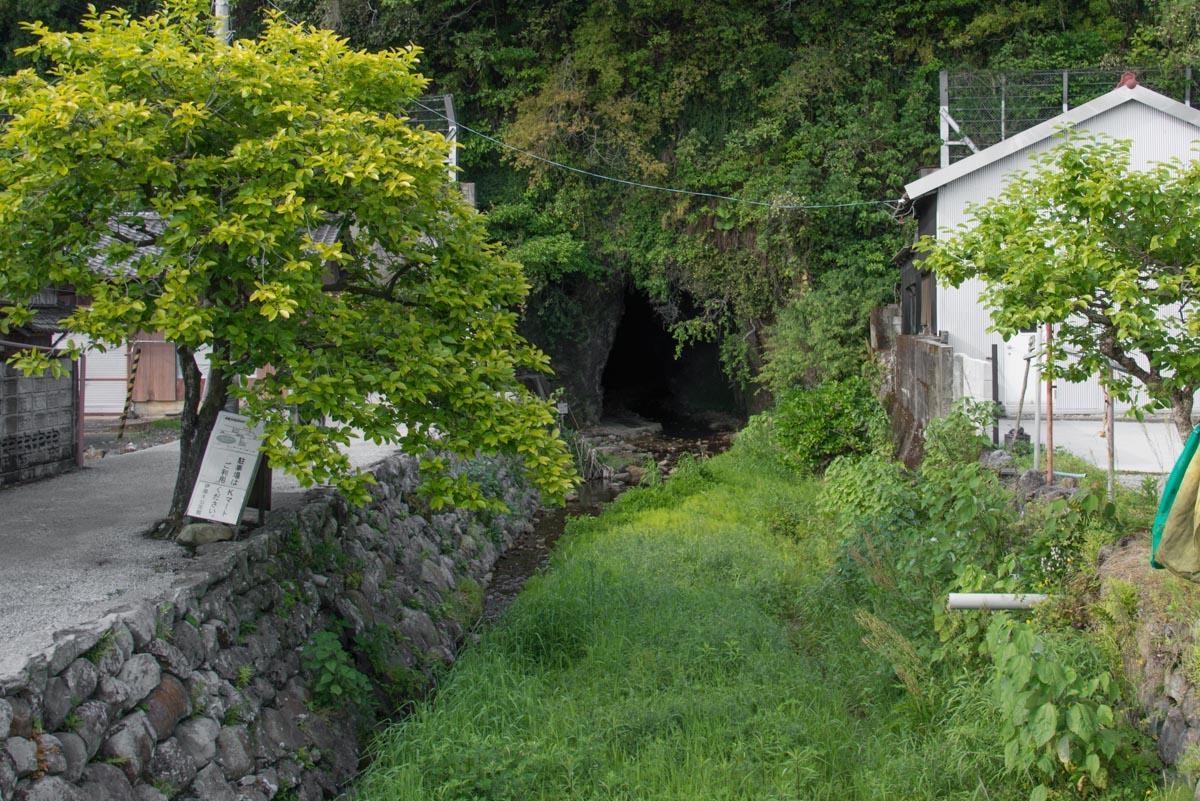 伊尾木洞の入り口