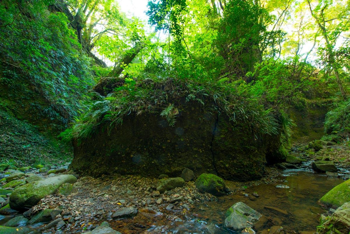 伊尾木洞の内部