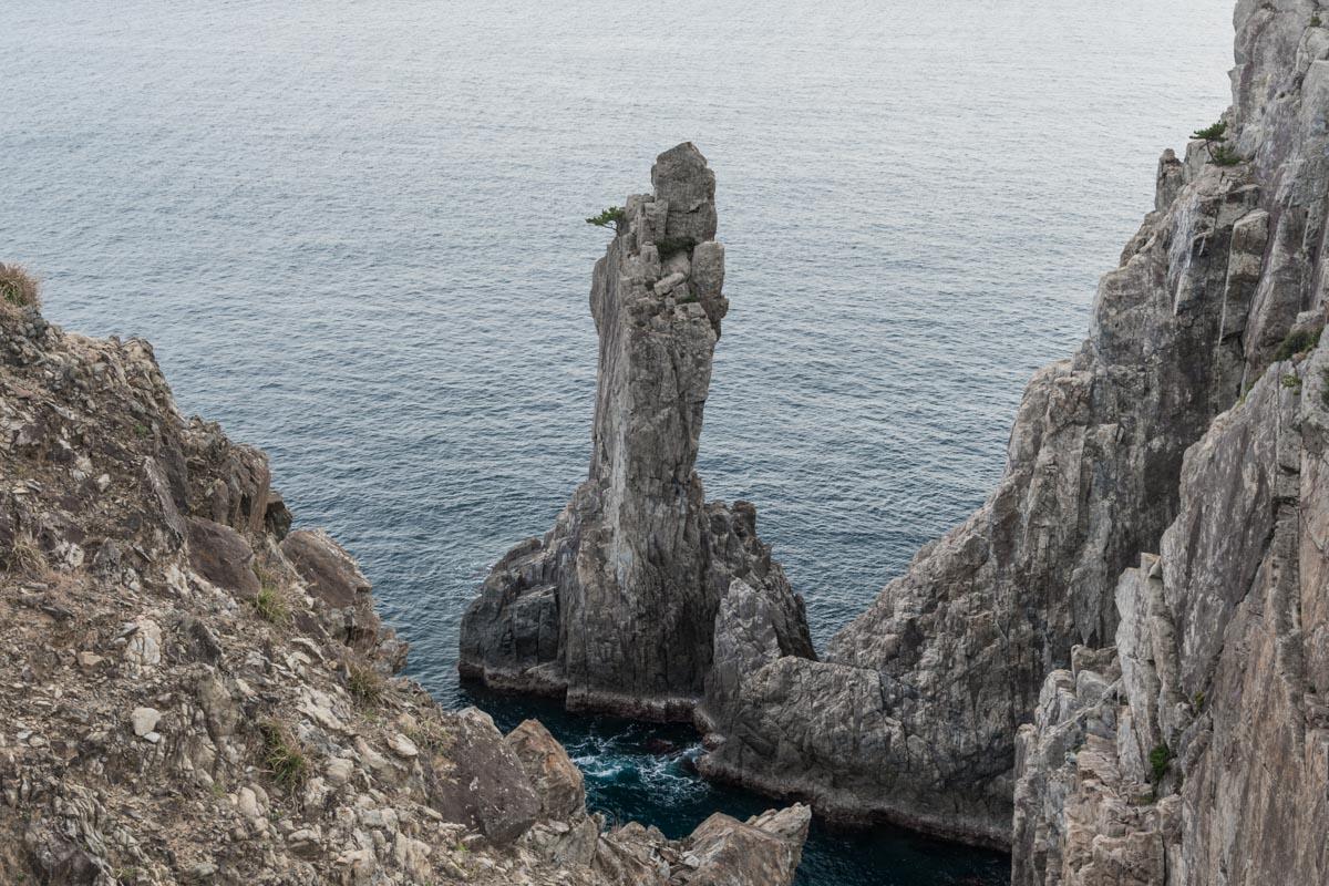 柏島の観音岩