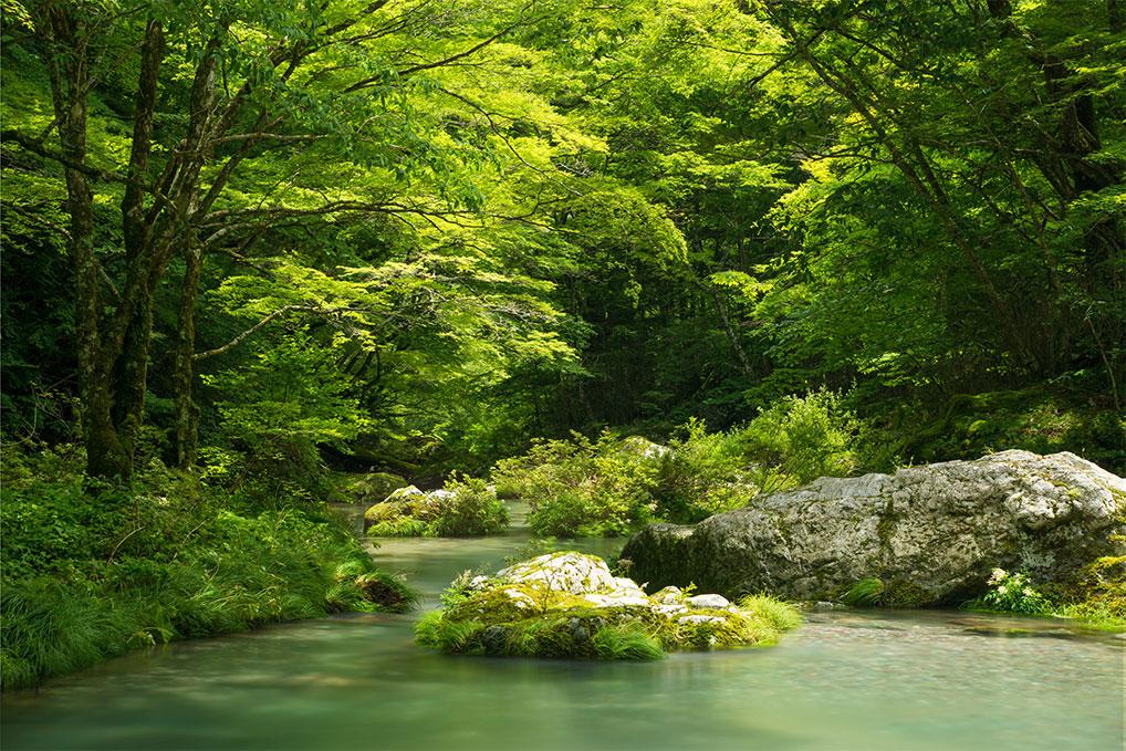 愛媛県 - 小田深山渓谷