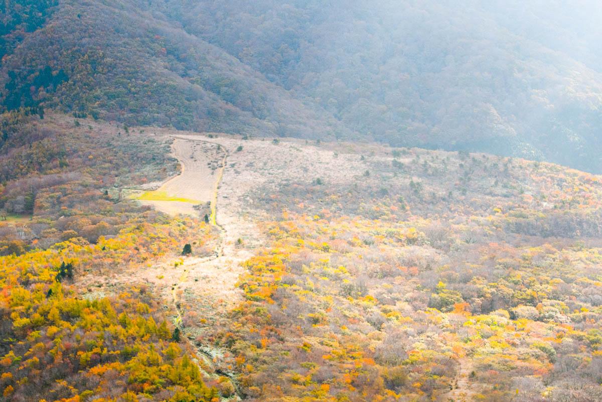 吾妻山の紅葉