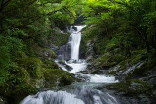 愛媛県の西種子川