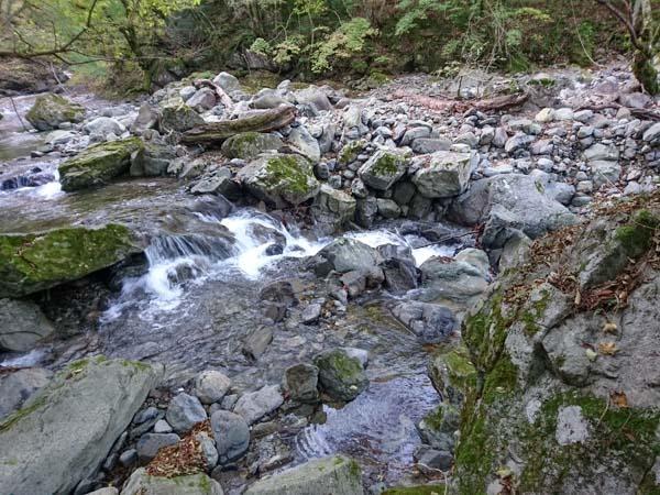 登山道入り口から1分、最初の渡渉。水流は奥にもう一本ある。手前の水流の方が水量は多い。登山道より20m下流の方が渡りやすいかもしれない。