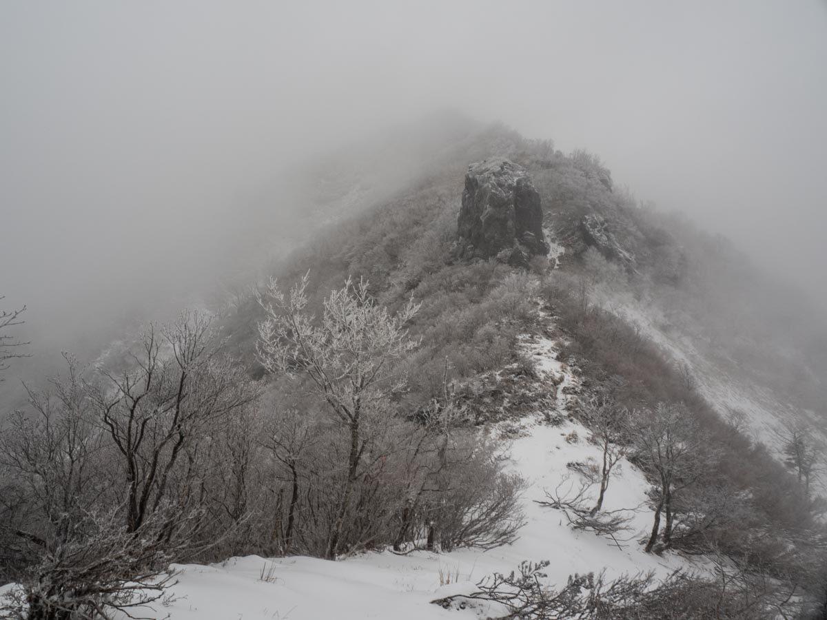 カヤハゲから三嶺頂上を目指す。山頂直下、最後の急登