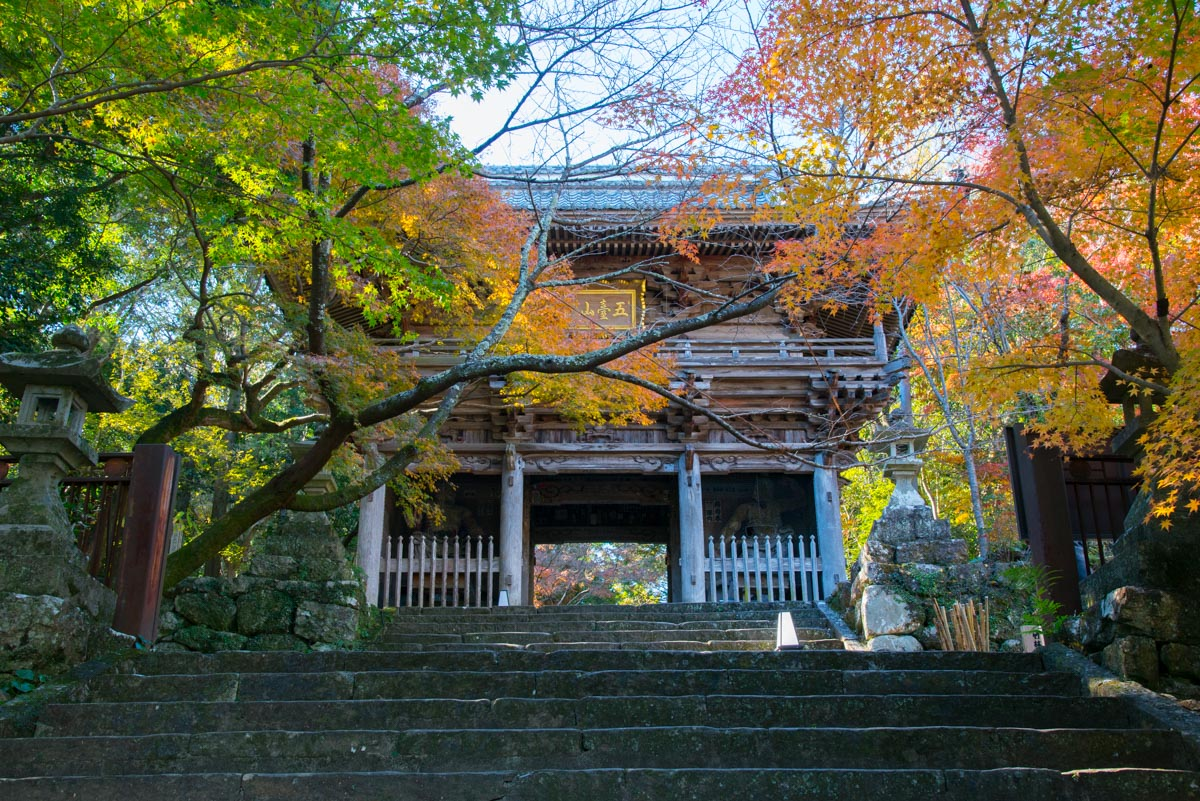竹林寺の山門