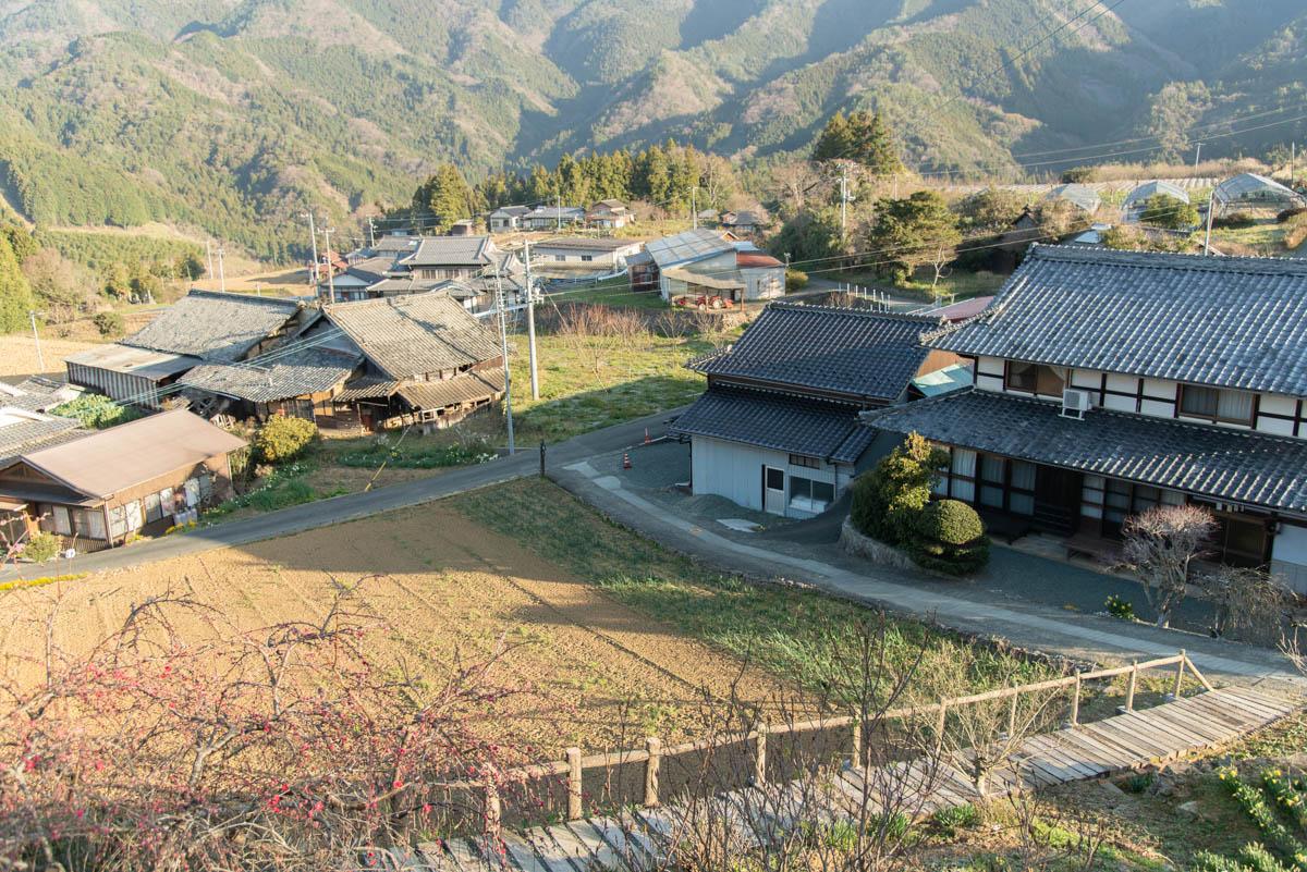 ishidatamihigashinoshidarezakura-4
