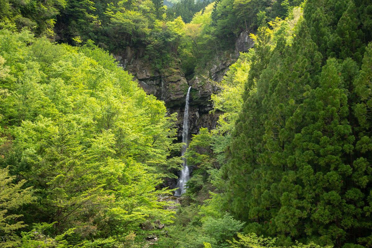 大瀧の滝,おおたびのたき