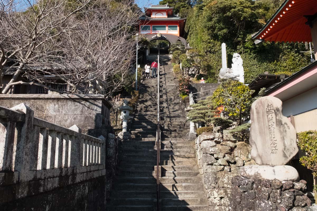 shinshouji1