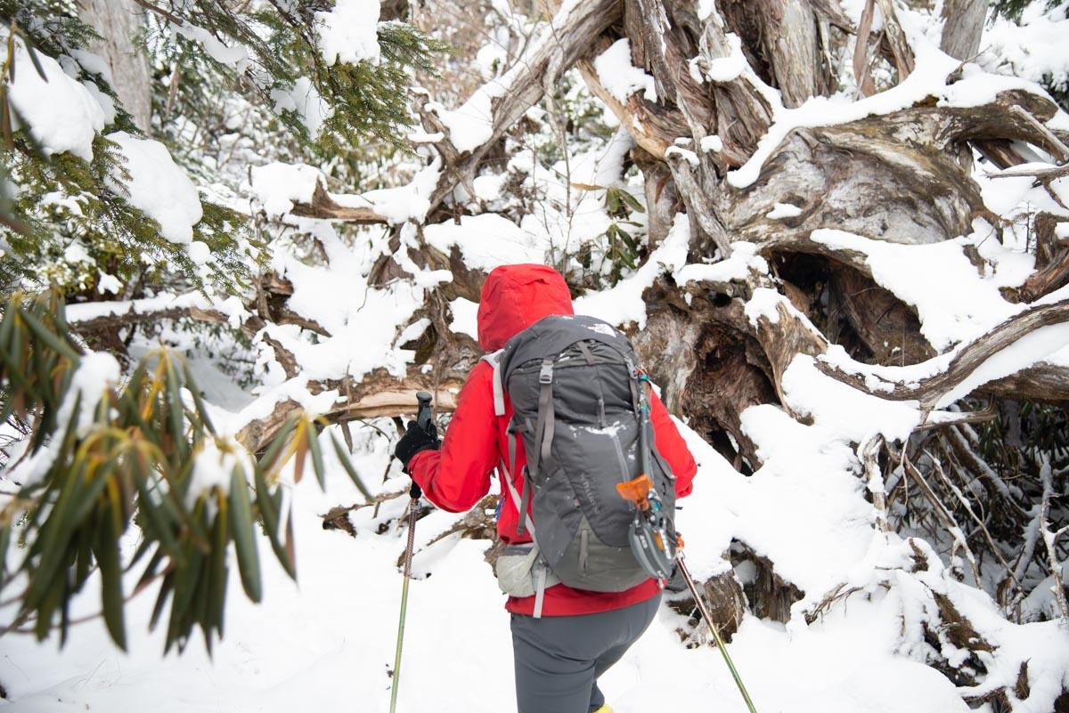 白髪山の登山コース