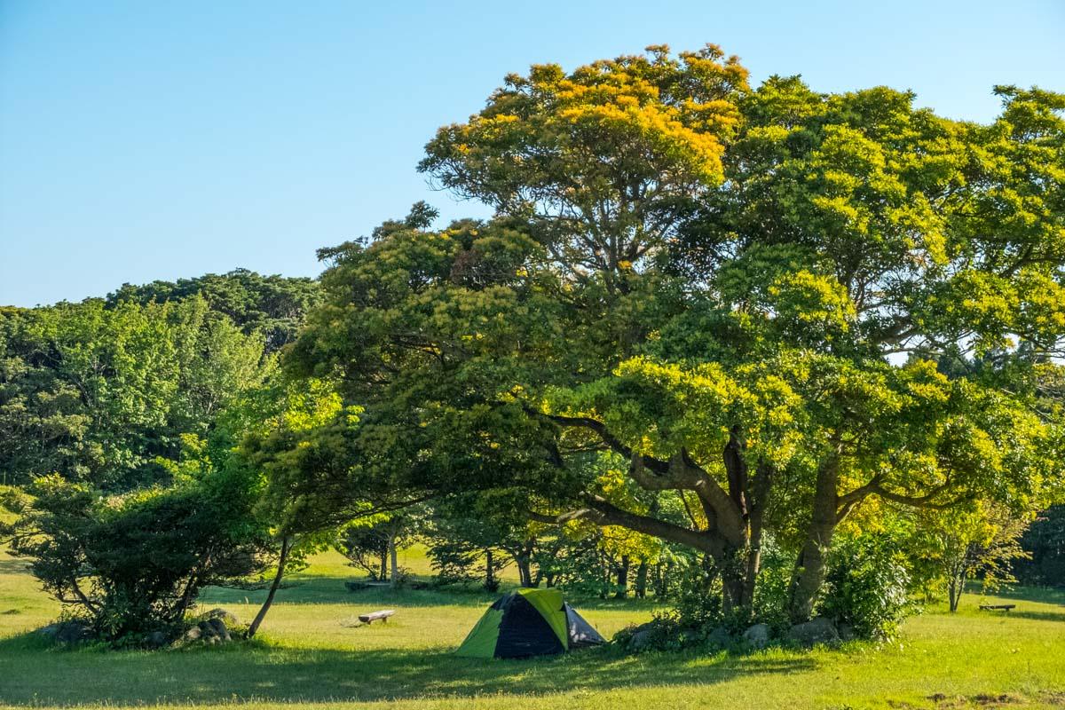 toujindaba-campsite-1